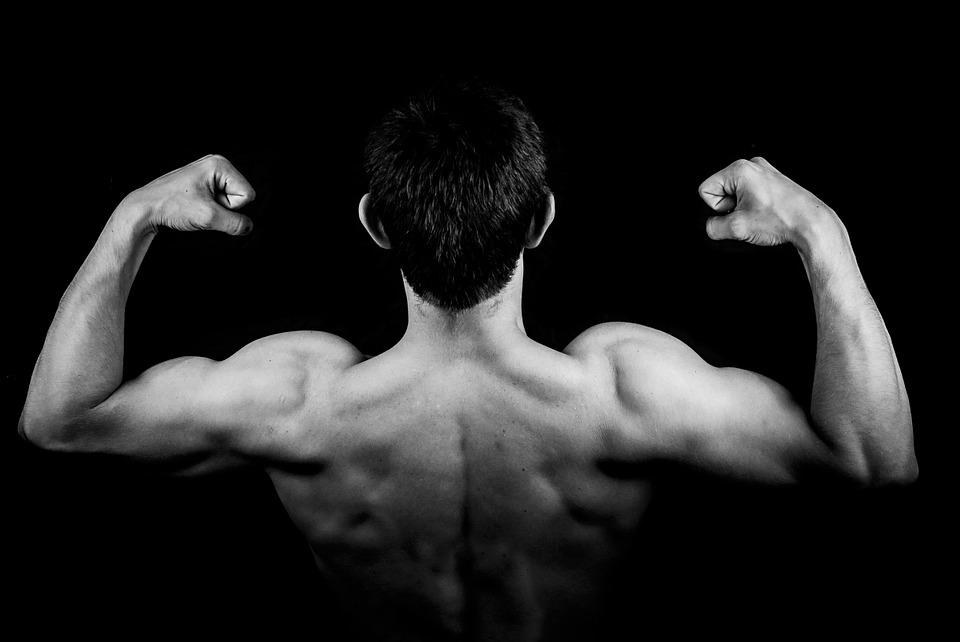 Quels articles pour faire de la musculation chez soi?